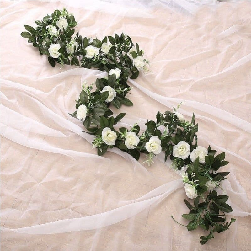 Ruusuköynnös, valkoinen, 2,4m